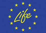 Logo_life_300px